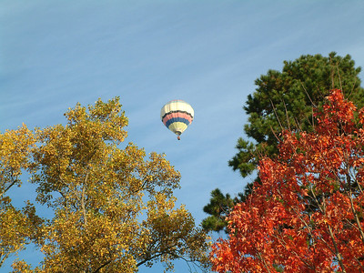 Hot Air Balloon ride in Central VA wine country!